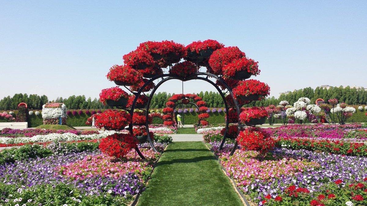 أزهار الرياض الخلابة