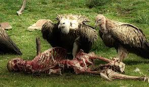 عادات قبائل التبت الدفن في السماء