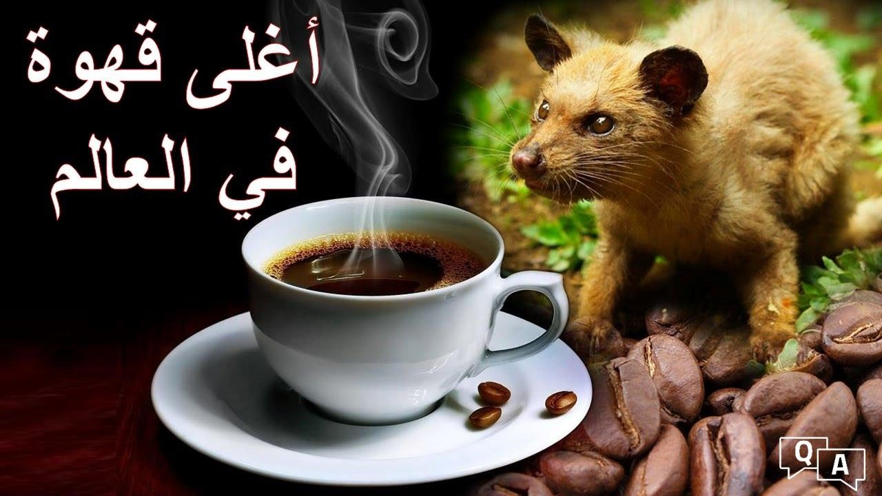 قهوة الكوبي لواك