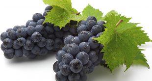 فوائد العنب وجدول القيمة الغذائيه