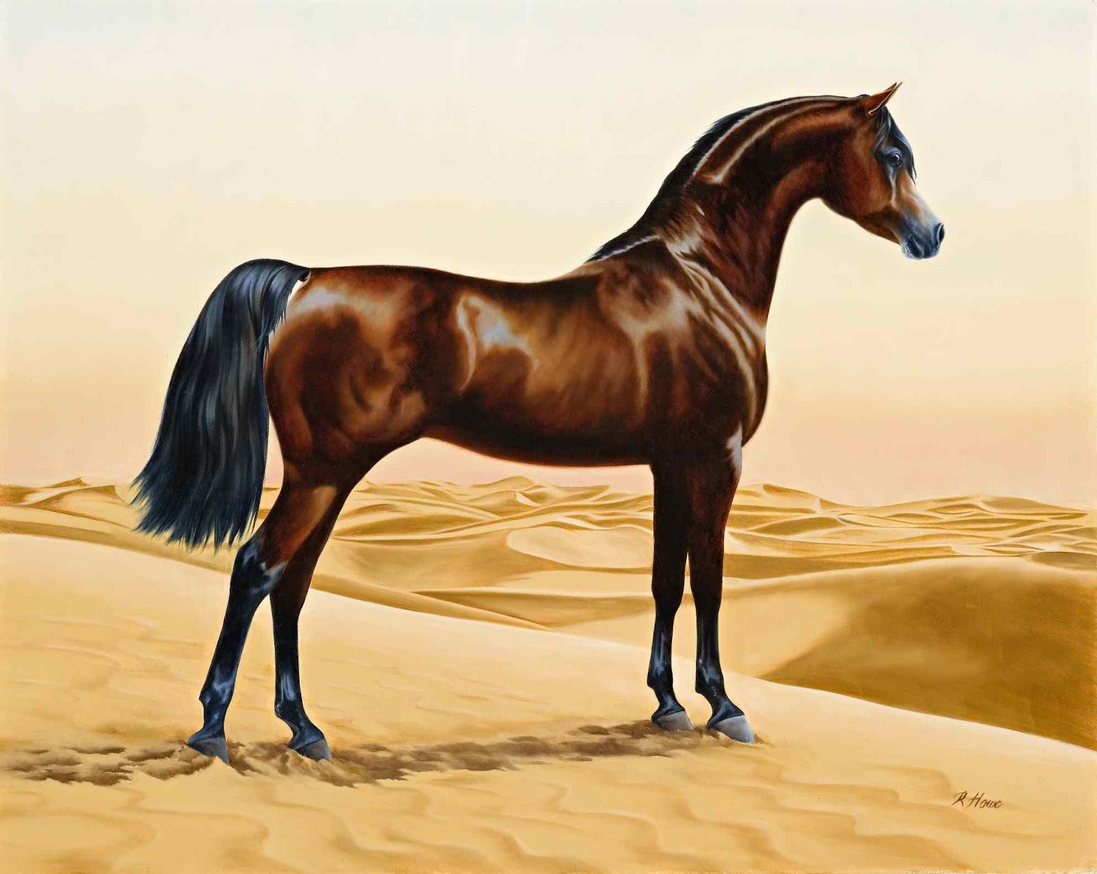 تاريخ الحصان العربي