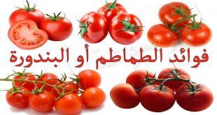 فوائد الطماطم الغذائيه