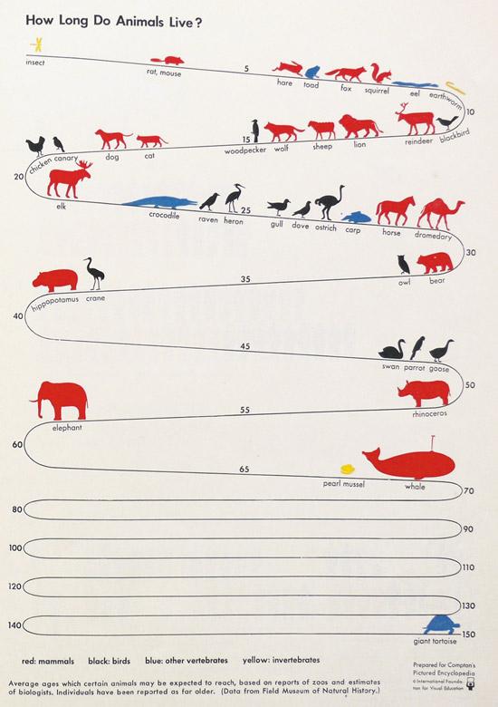 متوسط اعمار الحيوانات